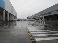 双流空港高标仓招租