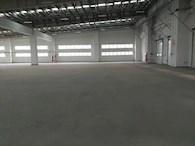 浦东新区外高桥自贸区内外大小仓库急需招商