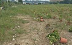 惠州惠东白花镇大型堆场招租可做停车场