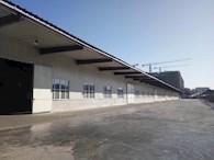 哈尔滨香坊区80000平优质仓库出租
