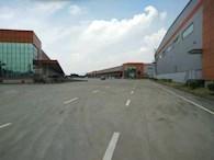 惠州罗阳镇物流园大面积高标准仓库招租