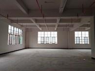 东莞厚街57480平米标准厂房仓库招租