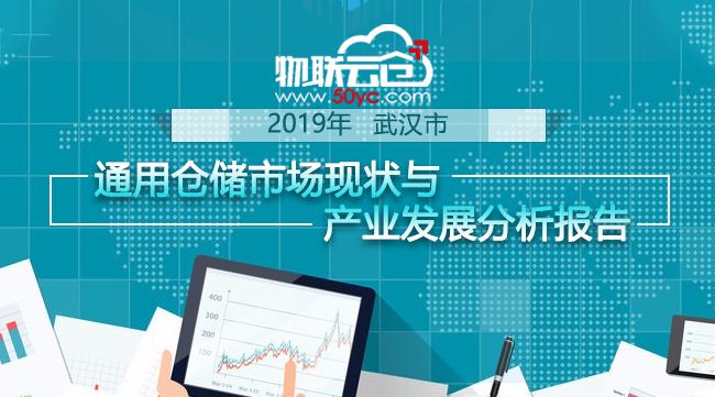 《2019年武漢市通用倉儲市場現狀與產業發展分析報告》